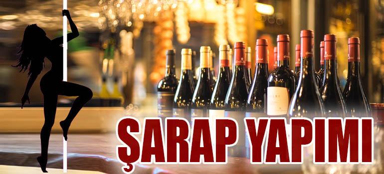 Şarap Yapımı | Kısaca Şarap Nasıl Yapılır? 2019