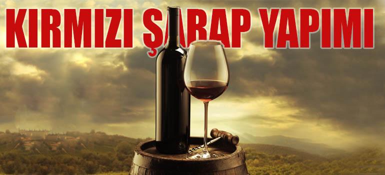 6 Adımda Kırmızı Şarap Yapımı Hakkında Her Şey 2019