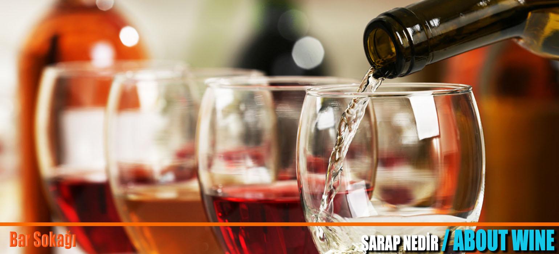 Şarap_Nedir