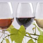 Şarap Nedir? Şarap hakkında bilgiler