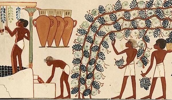 Şarap Tarihi