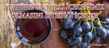 Atatürk'ün milli içeceğimiz olsun dediği içecek: HARDALİYE