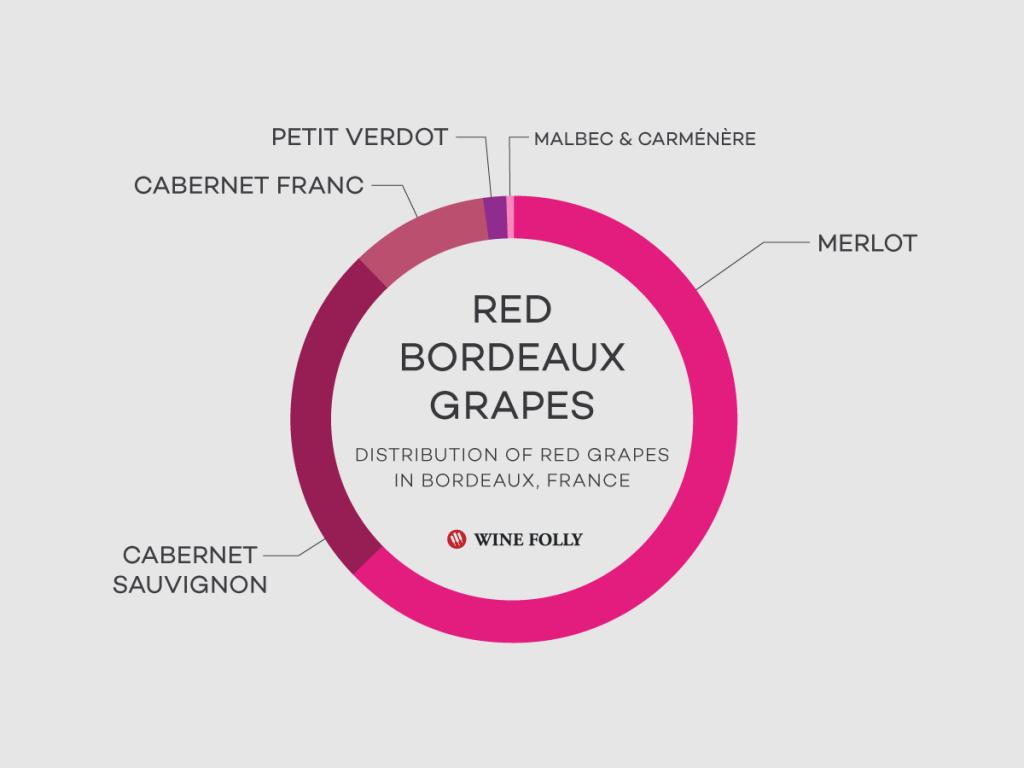 Bordeaux şarap üzüm çeşitleri