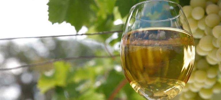Beyaz Şarap Nasıl Yapılır