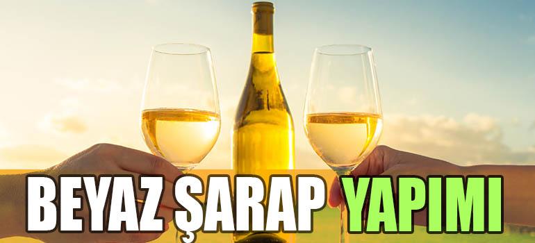 Beyaz Şarap Yapımı : 3 Adımda Tüm Detaylarıyla 2019