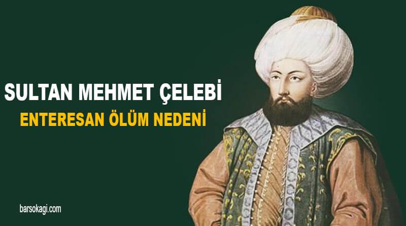 Sultan Mehmet Çelebi Ölüm Nedeni