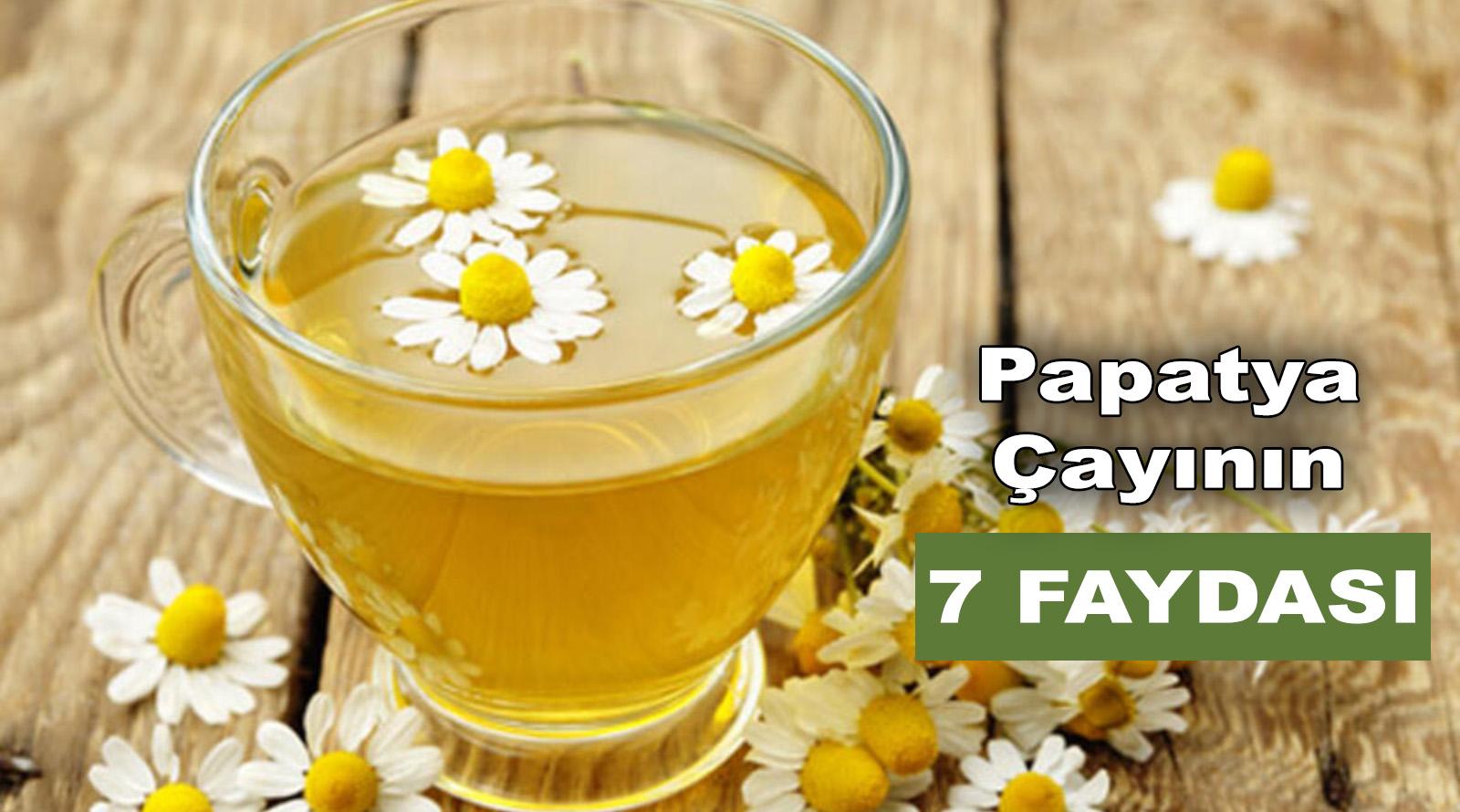 Papatya Çayının 7 İnanılmaz Faydası
